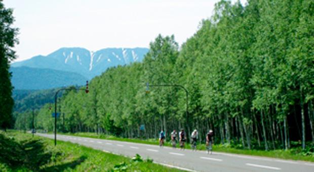 テーマ別サイクリングコース